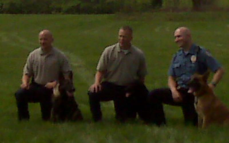 Police canine handlers and dogs after their demo.